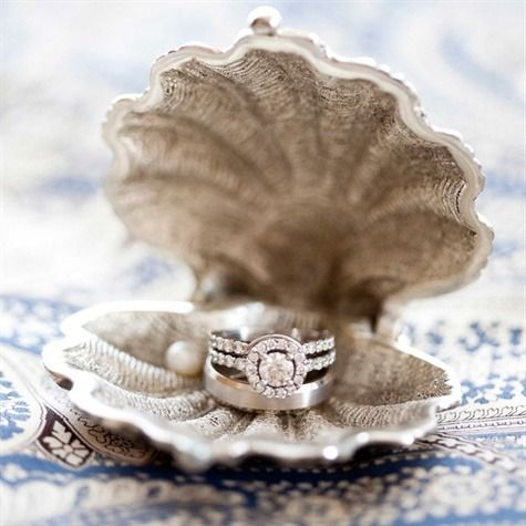 wedding rings in clamshell