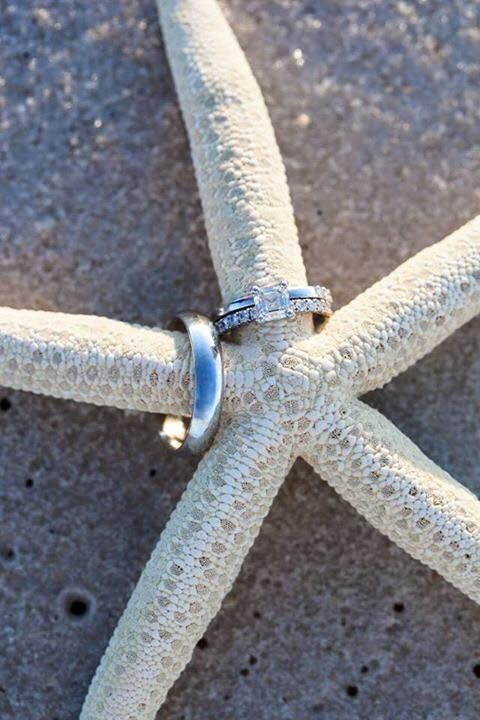 Rings on starfish before beach wedding