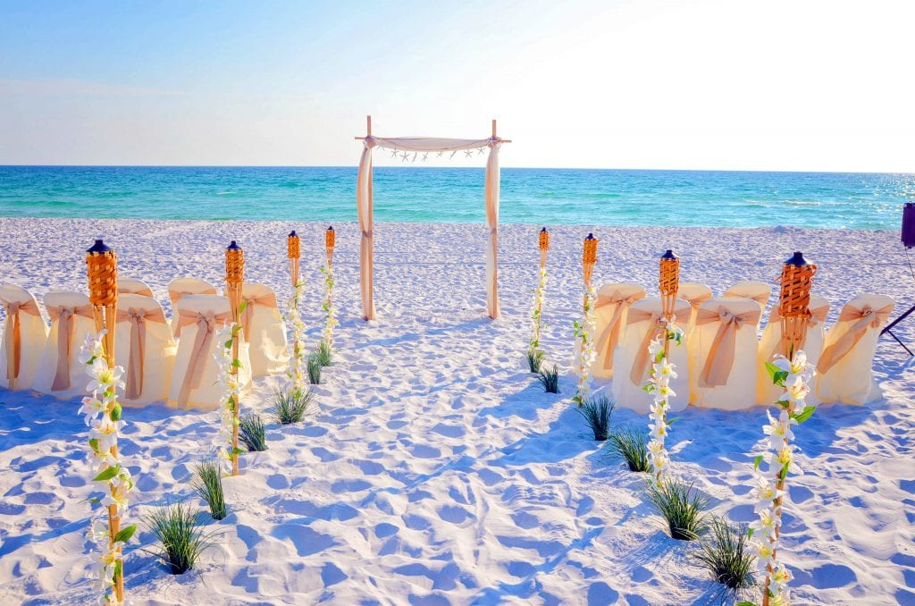 Small beach wedding arch in Florida with champagne and natural tropical decor