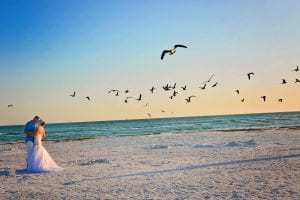 Siesta Key Beach Weddings during sunset with birds flying.