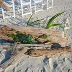 Driftwood beach wedding packages that are all-inclusive in Florida.