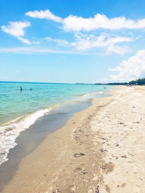 Turtle Beach Gulf coast, Florida